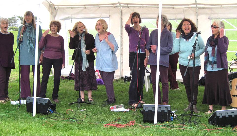 Wessex Women Harmony Choir